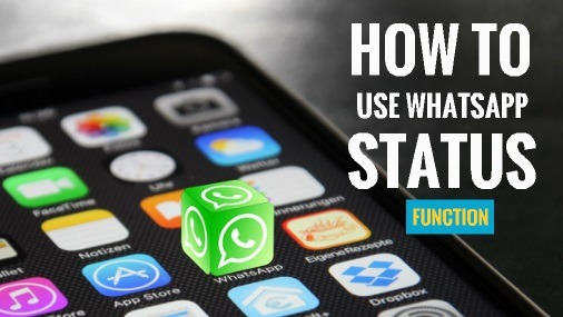 How to use whatsapp status function